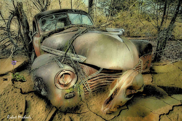 1941 Chevrolet in Cracked Mud